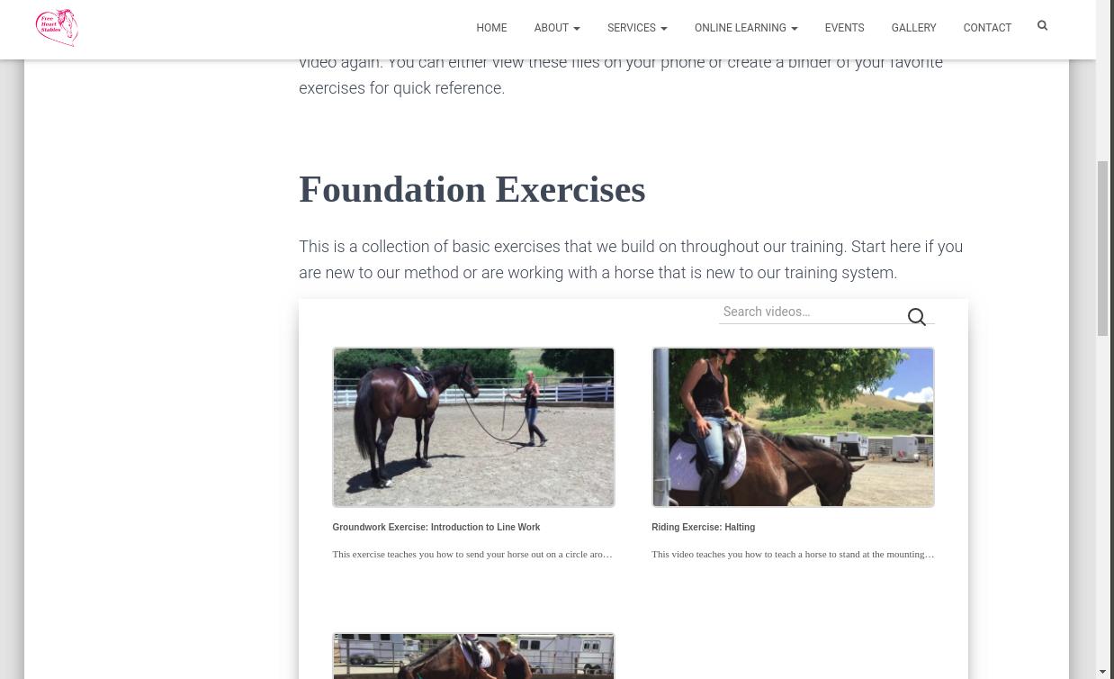 Exercises Page - Foundation Exercises